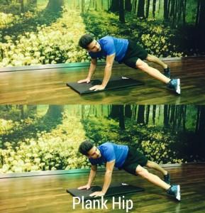 Plank Hip