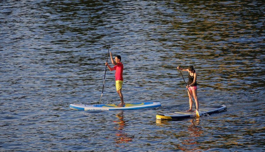 5 Actividades alternativas para verano